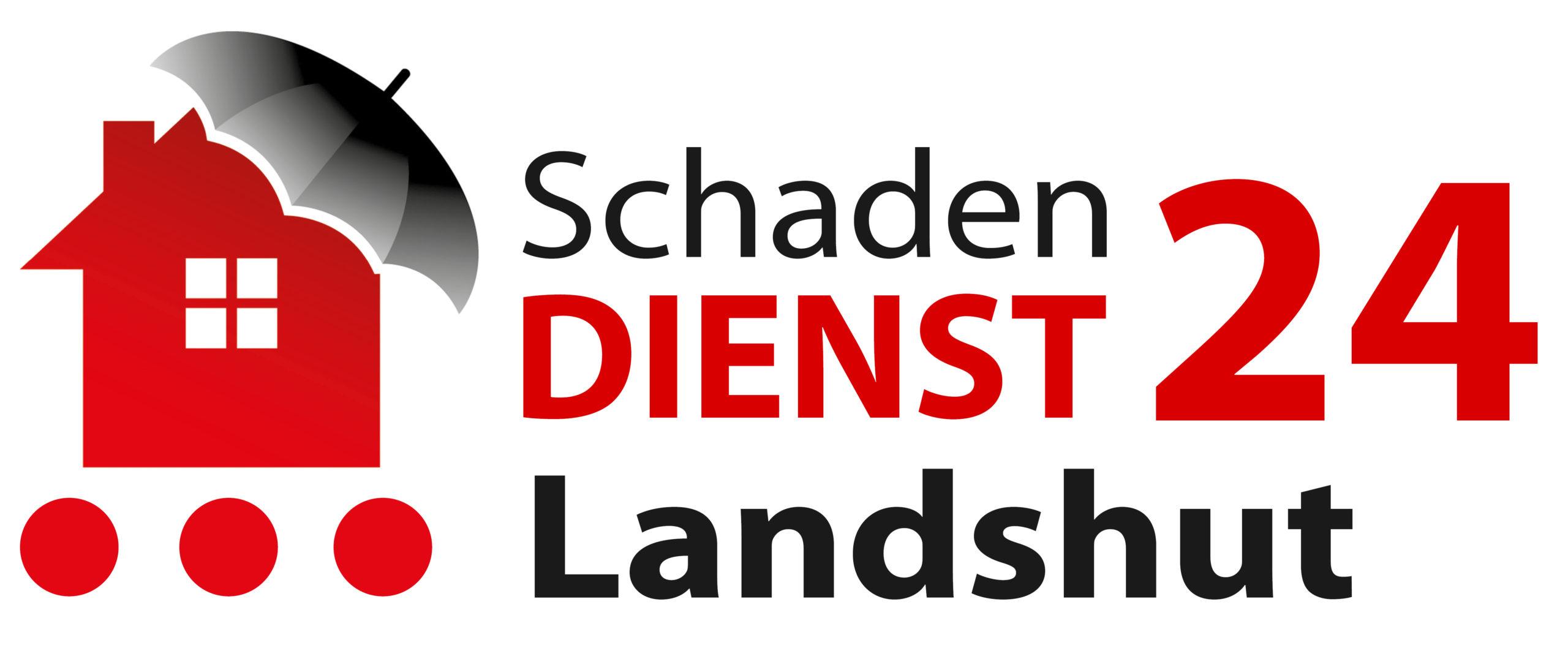 Schadendienst24 Landshut Logo